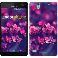 Чехол для Sony Xperia C4 Пурпурные цветы 2719m-295