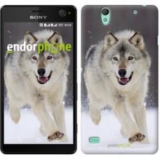 Чехол для Sony Xperia C4 Бегущий волк 826m-295