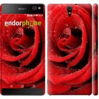 Чехол для Sony Xperia C5 Ultra Dual E5533 Красная роза 529m-506