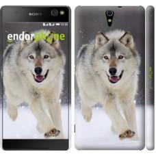 Чехол для Sony Xperia C5 Ultra Dual E5533 Бегущий волк 826m-506
