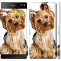 Чехол для Sony Xperia C5 Ultra Dual E5533 Йоркширский терьер с хвостиком 930m-506