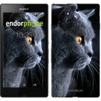 Чехол для Sony Xperia Z C6602 Красивый кот 3038m-40