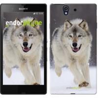 Чехол для Sony Xperia Z C6602 Бегущий волк 826m-40