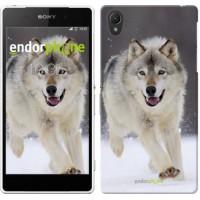 Чехол для Sony Xperia Z2 D6502/D6503 Бегущий волк 826c-43