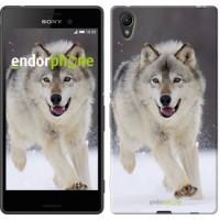 Чехол для Sony Xperia Z3+ Dual E6533 Бегущий волк 826u-165
