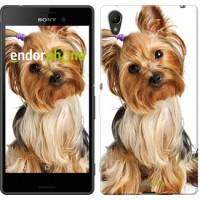 Чехол для Sony Xperia Z3+ Dual E6533 Йоркширский терьер с хвостиком 930u-165