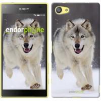Чехол для Sony Xperia Z5 Compact E5823 Бегущий волк 826c-322