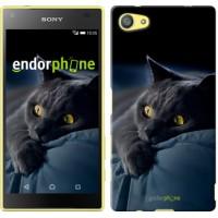 Чехол для Sony Xperia Z5 Compact E5823 Дымчатый кот 825c-322