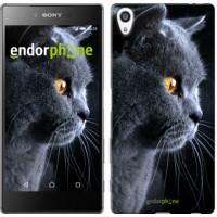 Чехол для Sony Xperia Z5 Premium Красивый кот 3038u-345