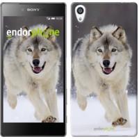 Чехол для Sony Xperia Z5 Premium Бегущий волк 826u-345