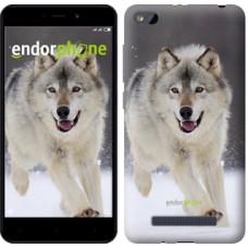 Чехол для Xiaomi Redmi 4A Бегущий волк 826m-631